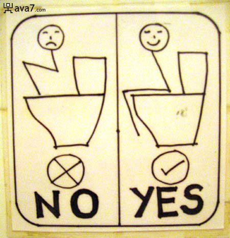 no yes toilet