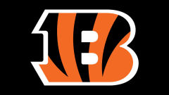 cincinnati bengals nfl football team