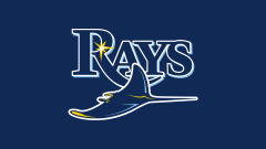tampa bay rays mlb baseball team
