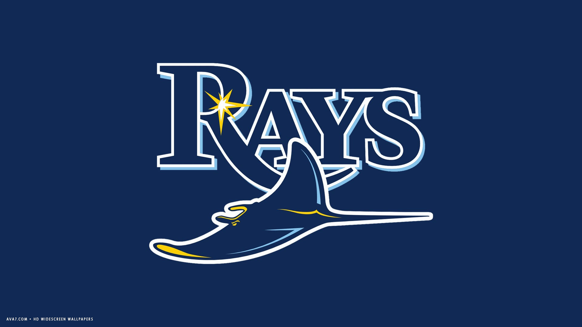 tampa bay rays mlb baseball team hd widescreen wallpaper