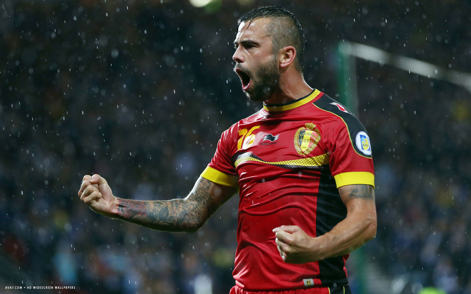 steven defour football player hd widescreen wallpaper