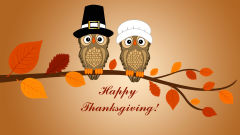 happy thanksgiving two owls branch leaves vector holiday