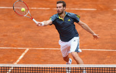 ernests gulbis tennis player