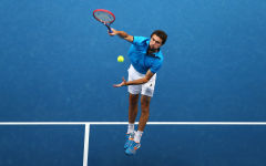gilles simon wallpapers