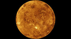 venus wallpapers