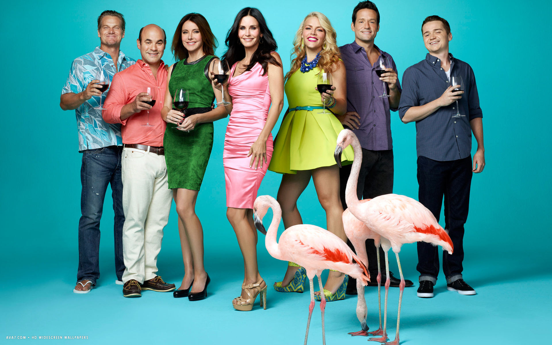 cougar town tv series show hd widescreen wallpaper