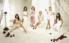 desperate housewives tv series show