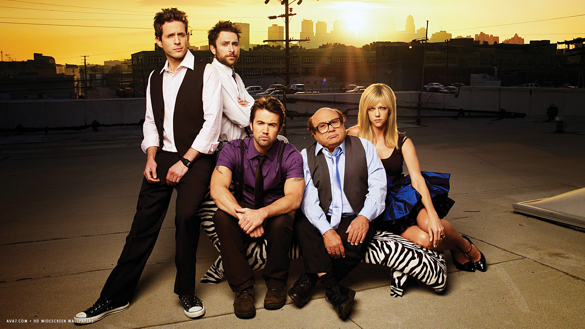 Its Always Sunny In Philadelphia Tv Series Show Hd Widescreen
