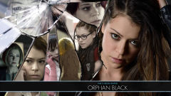 orphan black wallpapers