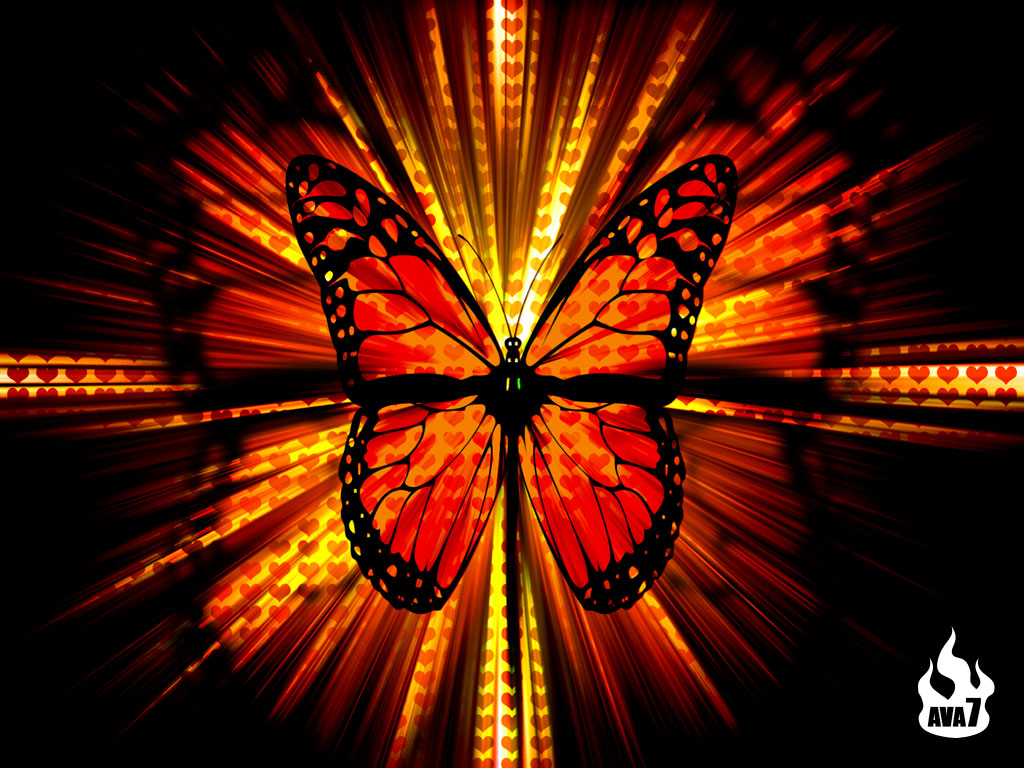 butterfly wall paper